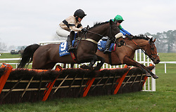 """Virginia Chick ridden by Isabel Williams jumps the last on their way to victory in the """"The Smart Money's On Coral"""" Handicap Hurdle during the Coral Welsh Grand National day at Chepstow Racecourse."""