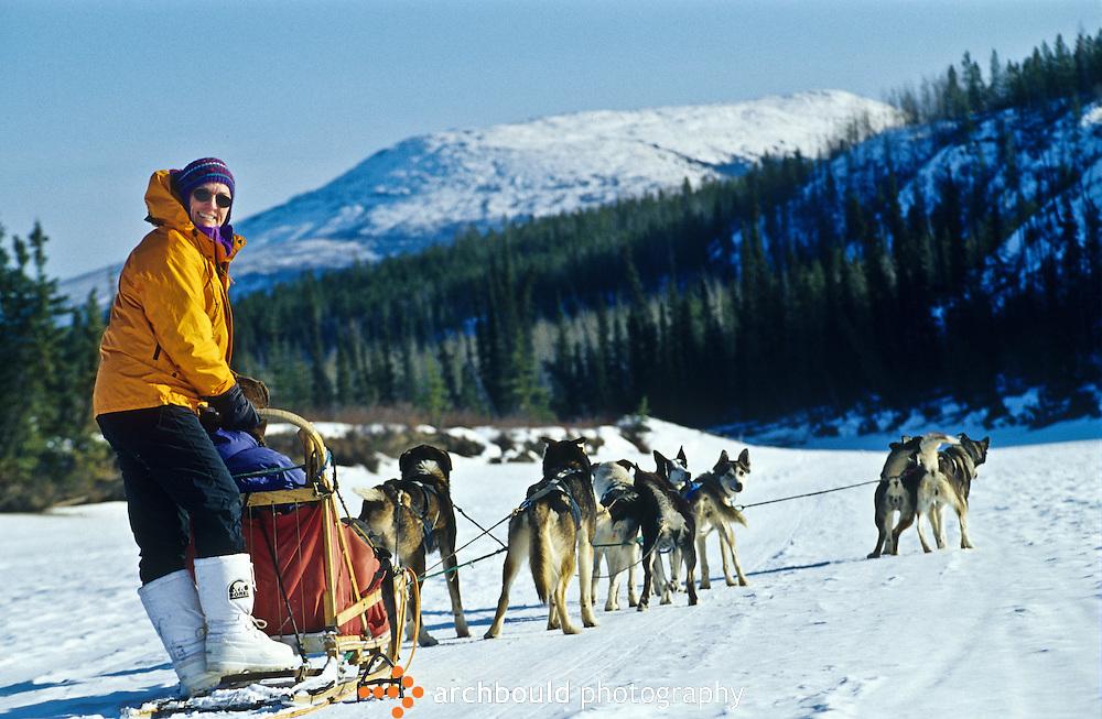 Dog sledding in the Yukon.