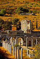 The Agora and Library of Celsus, Ephesus (Efes) archaeological site, Turkey