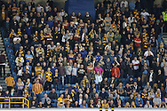 Bradford City fans in the stands. Skybet football league one play off semi final 2nd leg match, Millwall v Bradford city at The New Den in London on Friday 20th May 2016.<br /> pic by John Patrick Fletcher, Andrew Orchard sports photography.