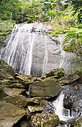 La Coca Falls in El Yunque National Forest, Puerto Rico.