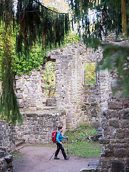 Woman on hiking tour in the Northern Black Forest, crossing ruins of castle of Zavelstein, Bad Teinach-Zavelstein, Baden-Württemberg, Germany