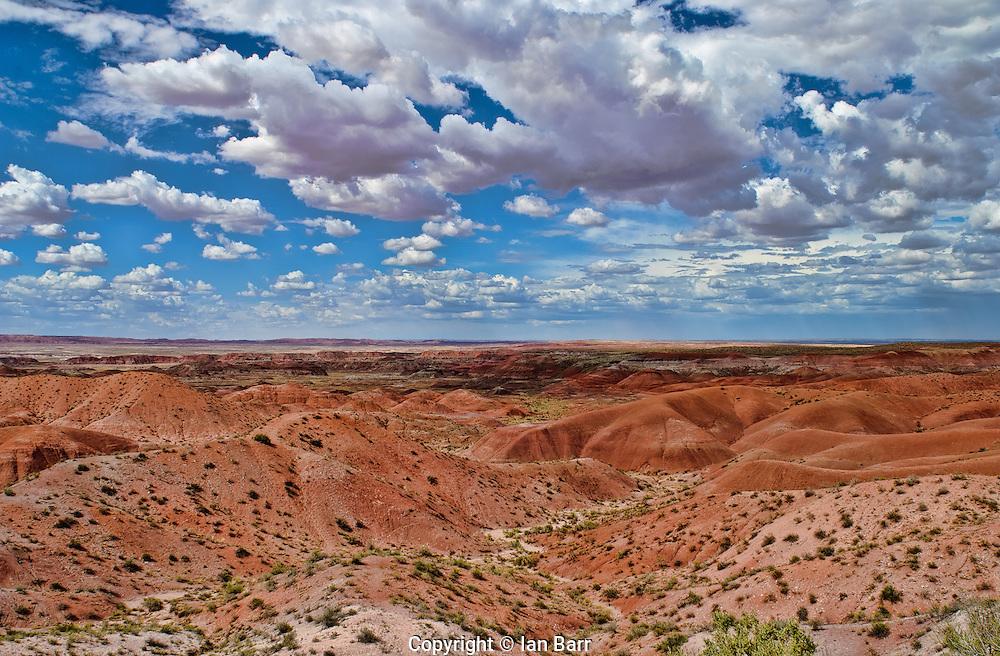 Painted Desert,Petrified Forest National Park,Arizona.USA.