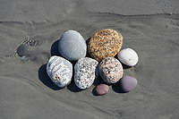 Study of pebbles on beach Cherry Hill Beach, Nova Scotia, Canada