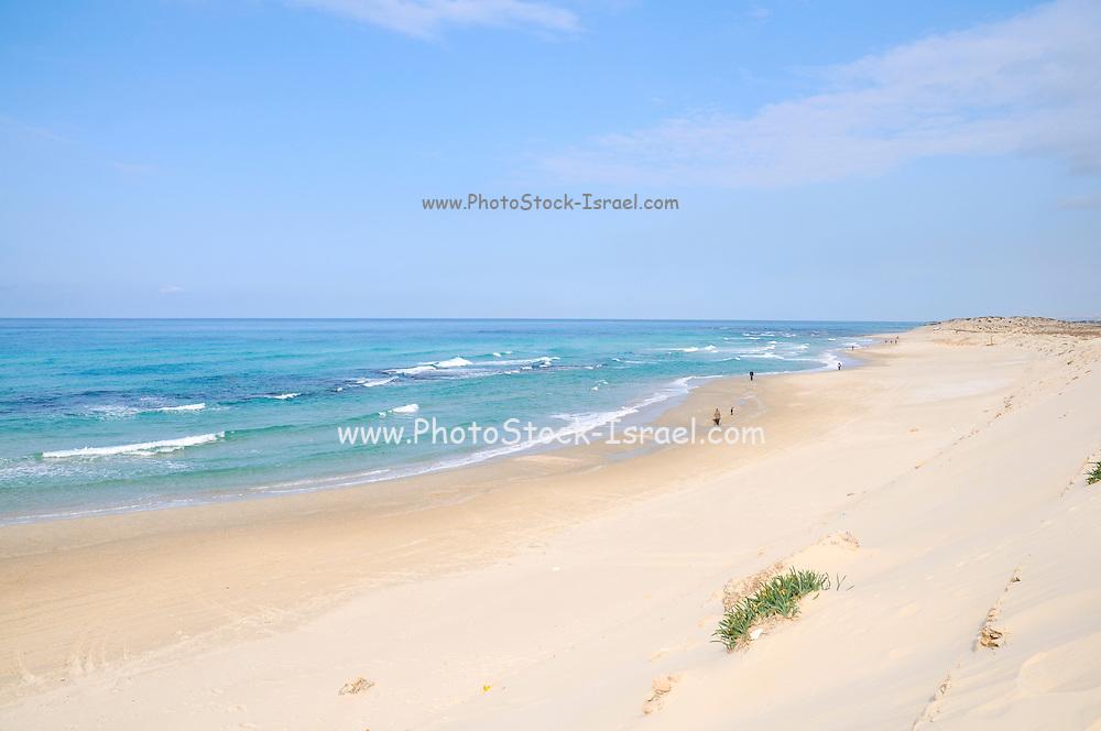 The white sands on the Caesarea beach