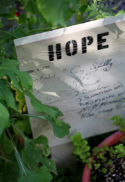 Inmates tend the Hope Garden at the Minnesota Correctional Facility in Red Wing August 20, 2012.  (Courtney Perry/Special to the Star Tribune)