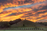 The Black Viking stautue under brilliant sunrise skies in Fort Ransom, North Dakota, USA