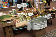 Barcombe Nurseries organic vegetable stall Lewes, East Sussex, England