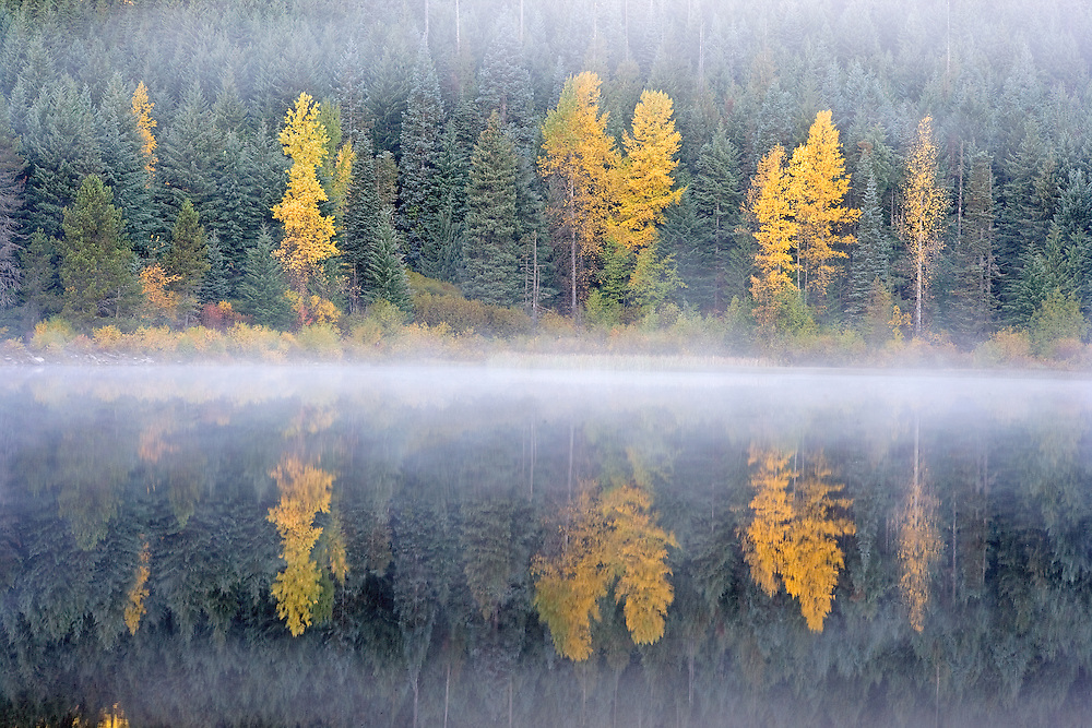 Autumn Reflections in Trillium Lake on Misty Morning