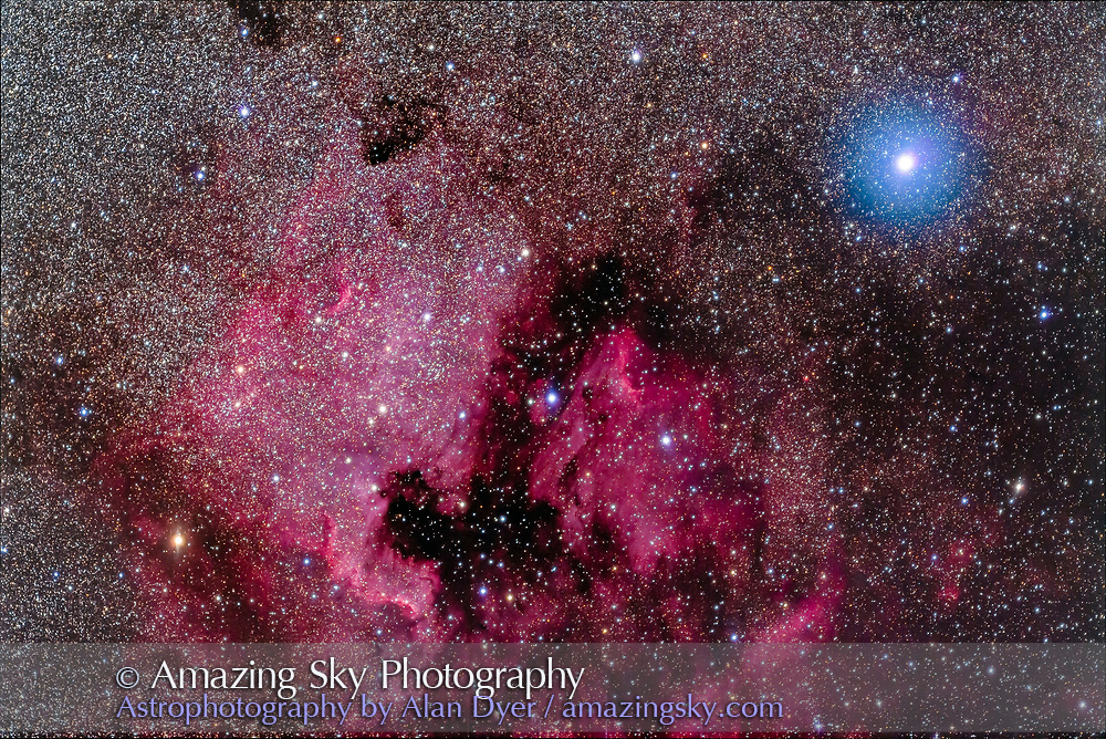 The North America Nebula (NGC 7000) and associated nebulosity and star clusters, near the bright blue-white star Deneb in Cygnus. <br /> <br /> This is with the Series 6000 Meade 70mm f/5 astrographic refractor (for a 350mm focal length), taken on May 15, 2018. <br /> <br /> This is a stack of 8 x 5-minute exposures with the filter-modified Canon 5D MkII at ISO 1600, with a ninth exposure blended in to add the glow around Deneb from the high haze passing through during that exposure, to add the colour contrast between the blue star and red nebula. All stacking in Photoshop.