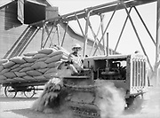 9969-2030. Caterpillar tractor at work. September 9, 1935.  Riverside Hop farm, owned by A.J. Ray and Son, Inc., Newberg, Oregon.