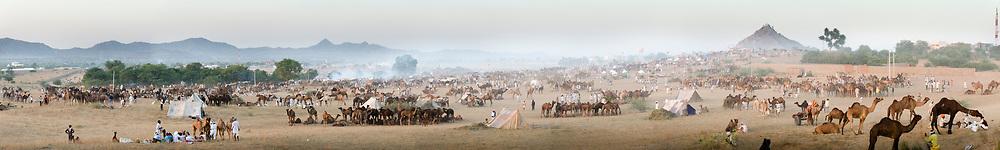 Panoramic view of the Pushkar camel fair, Pushkar, India.