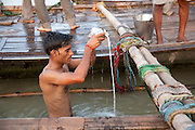 A Hindu devotee pours milk as he immerses himself on a platform tied between two boats at the sacred Triveni Sangam, the confluence of the rivers Ganges and Jamuna and the mythical Sarasvarti river at Allahabad, Uttar Pradesh, India