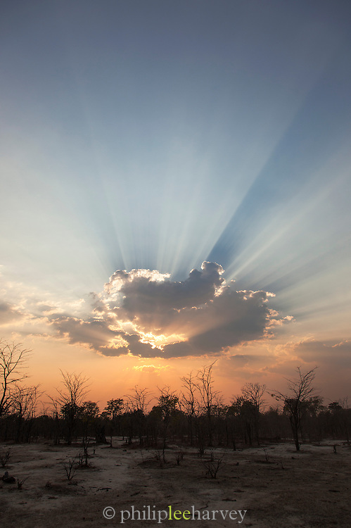 Sunset, South Luangwa National Park. Zambia, Africa