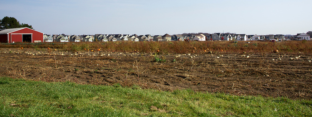 Panorama depicting the encroachment of suburban housing development to rural farming.