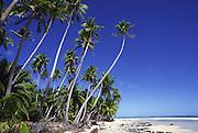 Mataiva Island, Tuamotus, French Polynesia<br />