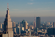 Tokyo Tower and the Docomo tower in Tokyo, showing air pollution over the city. Shinjuku, Tokyo, Japan Sunday December 23rd 2007