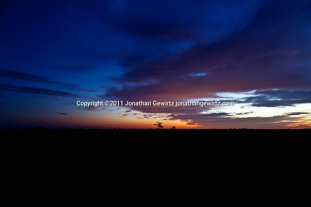 The Florida Everglades during rainy season, a few minutes before sunrise, looking East from the Pa-hay-okee Overlook. WATERMARKS WILL NOT APPEAR ON PRINTS OR LICENSED IMAGES.