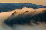 Sunrise light on coastal fog over hills near the mouth of the Klamath River, Redwood National Park, California