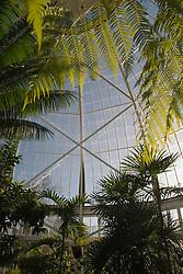 Greenhouse at W.W. Seymour Botanical Conservatory, Tacoma, Washington, United States