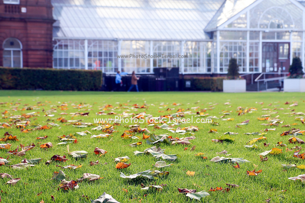 People's Palace and Winter Gardens in Glasgow, Scotland is a museum and glasshouse situated in Glasgow Green, and was opened on 22 January, 1898 by the Earl of Rosebery.
