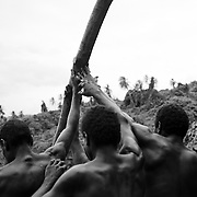 For three months of the year, on the remote South Pacific island of Pentecost, the tradition of land diving takes place. A tower is built from timber and vines collected from the hills around the dive site. Diving takes place between March and June when the vines are strong. The death defying dives are performed each Saturday, or when tourist cruise ships visit the Island throughout these months. The local tribes around Lonohore gather to perform the land diving as a sporting spectacle for the tourists visiting the island. A vine is tied to each ankle of the divers and the men and boys dive from different levels, some as high as ten meters. <br /> They hurl themselves off the platform diving at the solid ground below and are saved only by the vines which pull them back from the jaws of death inches from the ground. <br /> Land diving is an ancient tradition on the island and is now considered 'professional' by the divers who are rewarded for there dives by the money paid by tourists visiting the land dive site. But the money doesn't go to the individual; it goes to the village of the diver to help support that community. The divers are paid according to which jump level platform they dive off, which ranges from around A$6 from the lowest platform to A$30 for diving from the highest platform.<br /> <br /> Villages during the construction of the Land Diving tower on the hillside at Lonorore, Pentecost.