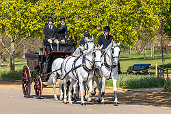 Licensed to London News Pictures. 20/04/2021. London, UK. Horse drawn carriages drive through Hyde Park as members of the public enjoy the warm sunshine again in London this morning a week after the easing of Covid-19 restrictions. A mini heatwave has hit the UK this week with temperatures reaching over 18c in London and the South East yesterday. Photo credit: Alex Lentati/LNP