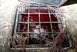 """Questo""""pozzo"""" altro non è che una vasca dove si conserva il mosto che diventerà vino dopo la sua fermentazione; sui bordi della bocca della vasca venivano messi dei rametti di timo che, secondo le credenze popolari, fungevano da antisettico e per non far salire il grado di acidità del mosto."""