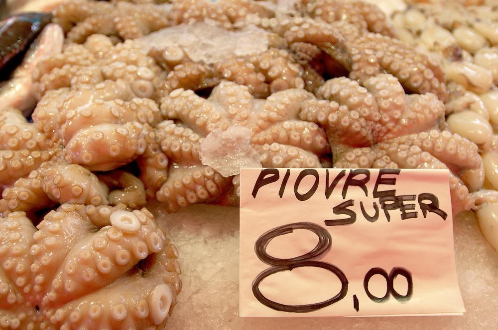 Fresh Sea Food & Fish - Octopus - Chioggia - Venice Italy