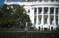 Iconic White House Tree To Be Cut Back - 27 Dec 2017