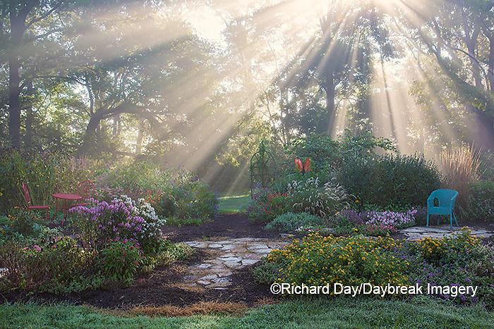 63821-23717 Sun rays in fog in flower garden, Marion Co., IL