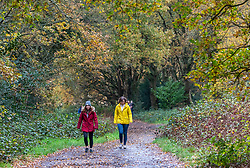 © Licensed to London News Pictures. 1/411/2020. London, UK. Members of the public walk through an autumnal Wimbledon Common as forecasters predict a wet and windy weekend. Walkers on Wimbledon Common, South West London brave the wind and the rain as the Met Office issue a yellow weather warning for heavy rain in the South East this weekend with wind speeds in excess of 50mph. Photo credit: Alex Lentati/LNP