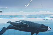A painted wall mural of whales in downtown Anchorage, Alaska.