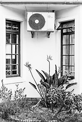 A detail of the garden beds with a strelitzia growing underneath an airconditioning unit outside a suburban home in  Fish Hoek, Cape Town, Western Cape, South Africa.(Picture: JULIAN GOLDSWAIN)