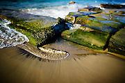 Seaweed Covered Rocks, Bar Beach near Newcastle,Eastern Australia Coast