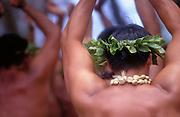 Men's Hula, Hawaii<br />