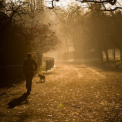 Early morning in Sefton Park.