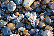 Close up of pebbles on the Thames foreshore, Greenwich, London