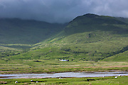 Solitary white croft farmhouse and farm barn nestling below mountain range by loch under moody sky on Isle of Mull in the Inner Hebrides and Western Isles of Scotland