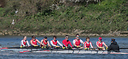 Mortlake/Chiswick, GREATER LONDON. United Kingdom. Sheffield, City Of, Rowing Club. Mx.MasB.8+, competing, 2017 Vesta Veterans Head of the River Race, The Championship Course, Putney to Mortlake on the River Thames.<br /> <br /> <br /> Sunday  26/03/2017<br /> <br /> [Mandatory Credit; Peter SPURRIER/Intersport Images]