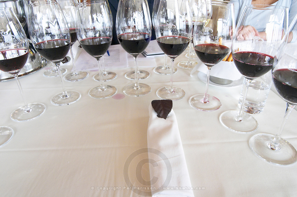 Wine glasses lined up for a big tasting, The restaurant at the winery with a view over the vineyard, nicely decorated tables. Bodega Familia Schroeder Winery, also called Saurus, Neuquen, Patagonia, Argentina, South America
