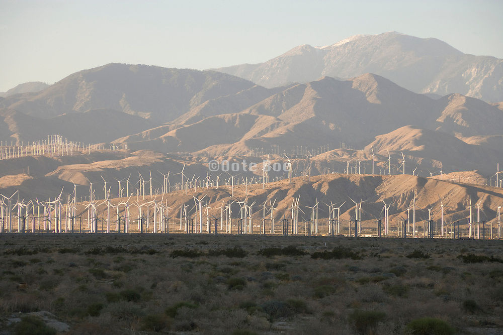 wind energy farm Palm Springs Southern California