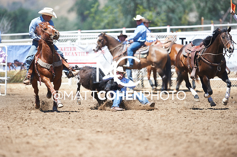 Steer wrestler Dakota Eldridge of Elko, NV competes at the Woodlake Lions Rodeo.<br /> <br /> <br /> UNEDITED LOW-RES PREVIEW<br /> <br /> <br /> File shown may be an unedited low resolution version used as a proof only. All prints are 100% guaranteed for quality. Sizes 8x10+ come with a version for personal social media. I am currently not selling downloads for commercial/brand use.