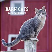 Barbara O'Brien Photography 2010 Barn Cat Wall Calendar