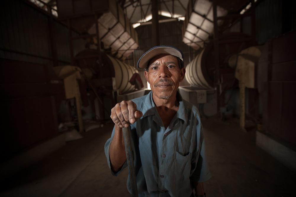 Santos Silvio Izcano at the installations that dry the coffee for COMITEL. COMITEL, Cooperativa Mixta Teupacenti Ltda, is a Fairtrade-certified coffee producer in Teupasenti, El Paraíso, Honduras.