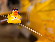 """A """"rubber ducky"""" good luck charm placed on a guy wire of a Reno Air Racer."""