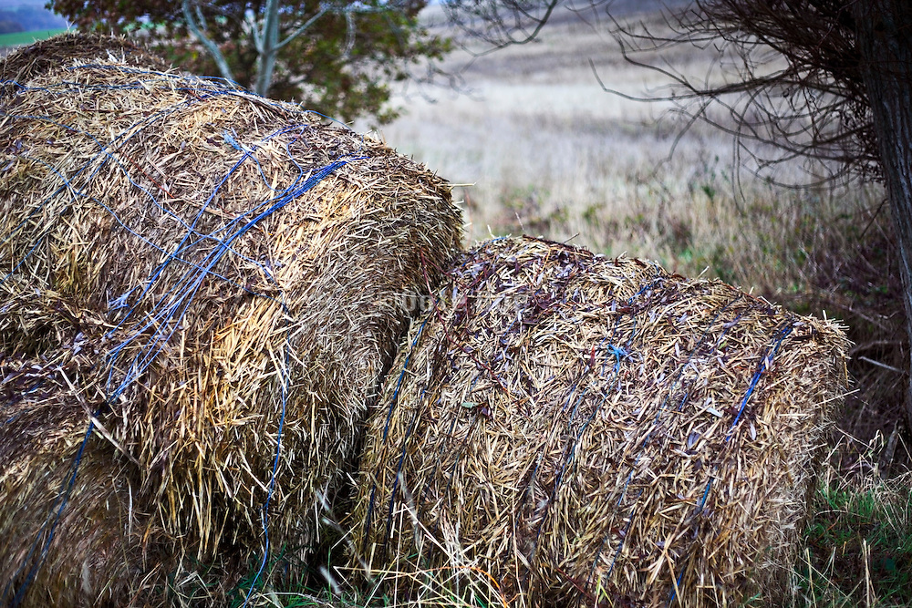 close up of weathered round hay bales France