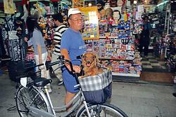 Man W/dog In Basket On Bike