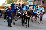 Horse and carriage in Bayamo, Granma, Cuba.