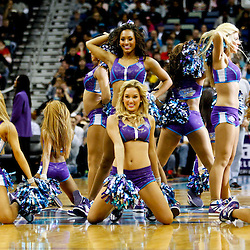 New Orleans Honeybees